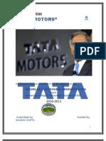 Tata-Motors project