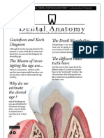 Dental Anatomy - Lecture 3