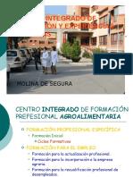 Sistema Educativo y Ciclos CIFEA Molina