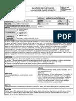 SCGDI505_Gui769a_para_pra769cticas_de_laboratorio_taller_o_campo_Tallo (1) (1).docx (5)