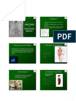 Anatomia y Fisiologia 1130802