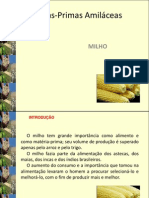Aula 3-MP amiláceas milho