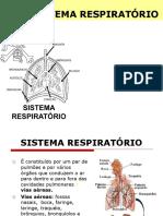 Apresentação-SISTEMA RESPIRATÓRIO 8-ano