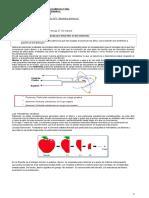 home-Guía 1 Física_guia de modelos atómicos 1 medio