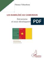 Bamiles Cameroun