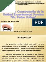 Presentacion final proyecto cerdos