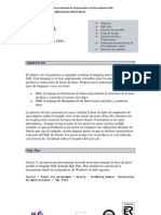 Oracle - Prctica 1