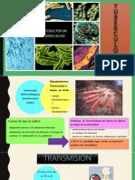 tuberculosis-medicinainterna-171117031253
