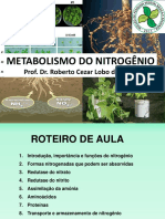 METABOLISMO DO NITROGÊNIO Prof. Dr. Roberto Cezar Lobo da Costa