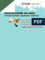 Biodiversidade Em Ação - Abelhas Nativas