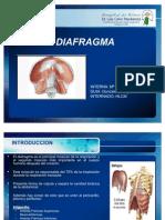 DIAFRAGMA(pilar)