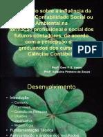 Um_estudo_sobre_a_influência_da_disciplina_Contabilidade_Social_ou_Ambiental_na_formação_profissional_e_social_dos_futuros_contadores