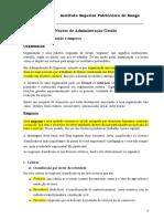 Tema 1 Nocoes de Administracao - Gestao Empresarial