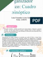 Cuadro Sinóptico EXPOSICION