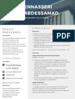 Moderne Professionnel C.v. (2)