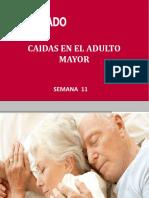 SEM_11.-_CAIDAS_EN_EL_ADULTO_MAYOR_1