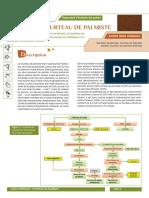 Tourteau de palmiste_coproduit