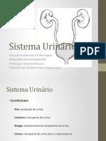 Aula 01- Anatomia do sistema urinário