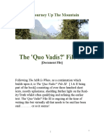 The 'Quo Vadis?' File III