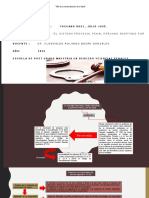 MODULO Tarea Nº 1 El sistema procesal penal peruano adoptado por el CPP de 2004