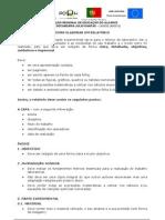 FI (3)- Como Fazer um relatório