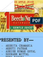 BEECH NUT CASE STUDY