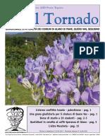 Il_Tornado_753