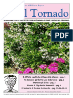 Il_Tornado_755