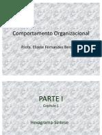 Comportamento Organizacional - Capitulo 1