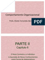 Comportamento Organizacional - Capítulo 6
