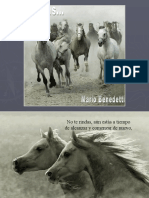 mariobenedetti-noterindas-100615155400-phpapp01