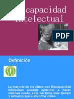 Discapacidad_intelectual_(Expo_NEE)