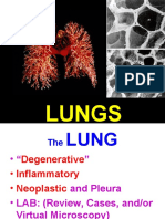 Ch15-Lung