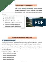6. Valoración de Impactos