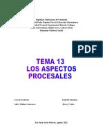 T.G.del Proceso Tema 13 Aspectos Procesales.