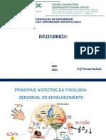 MATERIAL DIDÁTICO 1o E.D Slides 12.08