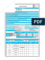 Formato  Plan de Auditorias