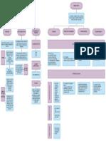 Características de La Farmacocinética y Farmacodinamia