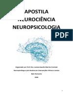 Apostila Neuropsicologia prof. Luciana pdf