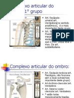 fisiologia_do_ombro