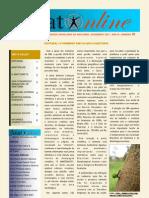 boletim_informativo_nov07