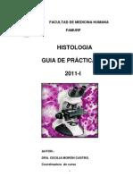 GUIA DE PRACTICAS 2011 I