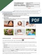 1 GUIA PEDAGOGICA CIENCIAS- FISICA  IIP. 4- 2021 (1)