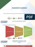 12_ CURSO COGEP SUMARIO Y EJECUTIVO