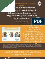 Implementacion de Acciones Preventivas en Caso de Riesgo de Violencia Contra La Mujer y Los Integrantes Del Grupo Familiar en Lugares Publicos