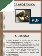 BOCA_APOSTOLICA_-_Vis__o_Apostolica_-_F._Pastores