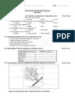 test hidrografia V