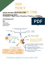 Actividad UML
