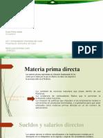Act_1.3_Dosal_Perez_ Presentación Elementos del Costo