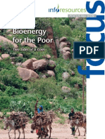 Bioenergy for the Poor
